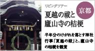 熊野神社と岡崎神社 夏越(なごし)の祓(はらえ)と廬山寺(ろざんじ)の桔梗(ききょう)