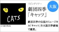 5月で千秋楽を迎える 劇団四季「キャッツ」
