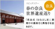 薬師寺・食堂(じきどう)と興福寺・国宝館 春の奈良世界遺産巡り