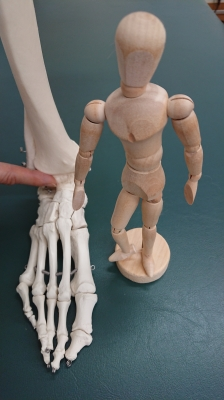 足と身体の健康教室