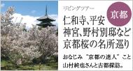 仁和寺、平安神宮、野村別邸など 京都桜の名所巡り